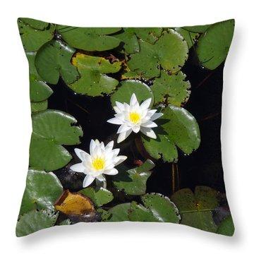Throw Pillow featuring the photograph 2 Water Lily by Robert Nickologianis
