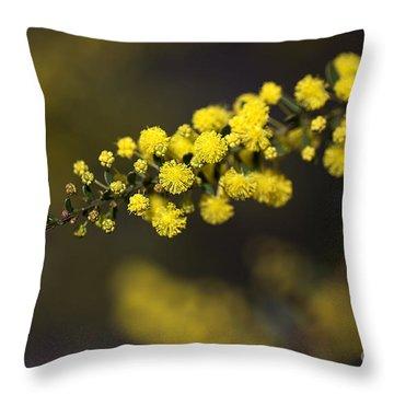 Wattle Flowers Throw Pillow by Joy Watson