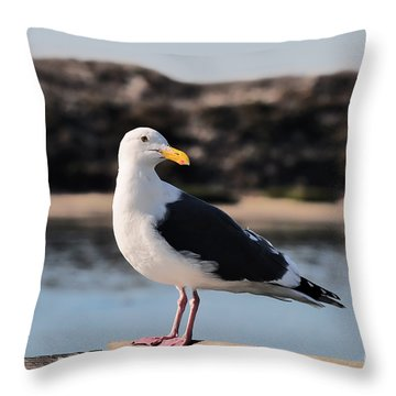 Western Gull At Moss Landing Inlet Throw Pillow by Susan Wiedmann