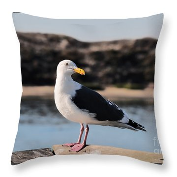 Western Gull At Moss Landing Inlet Throw Pillow
