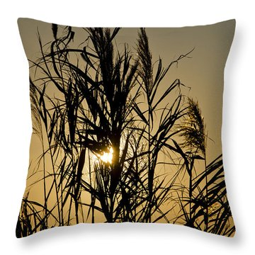 Throw Pillow featuring the photograph Whalehead Sunset Obx #3 by Greg Reed