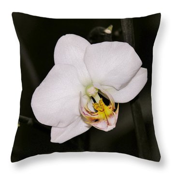 Throw Pillow featuring the photograph White Orchid by Sherman Perry