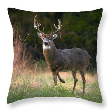 Whitetail Deer In Rut Throw Pillow