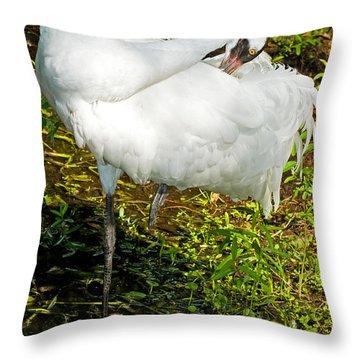 Whooping Crane Throw Pillow