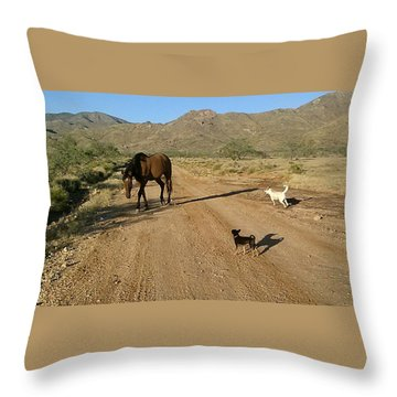 Three Friends On The Range Throw Pillow