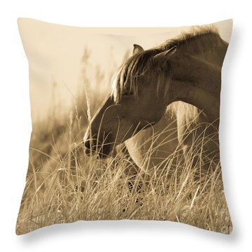 Wild Horse On The Beach Throw Pillow