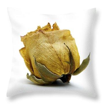Wilted Rose Throw Pillow by Bernard Jaubert