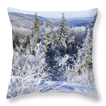 Winter Along The Highland Scenic Highway Throw Pillow by Thomas R Fletcher