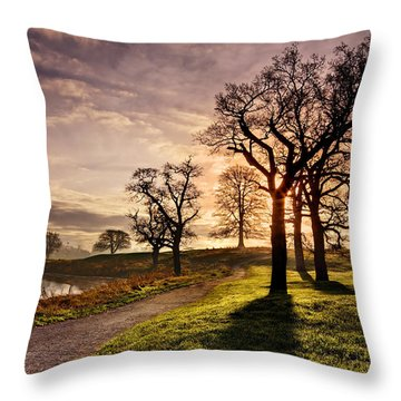 Winter Morning Shadows / Maynooth Throw Pillow