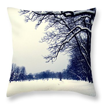 Winter Throw Pillow by Nina Ficur Feenan