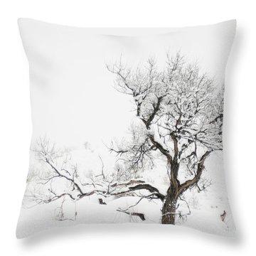 Winter Sage Throw Pillow