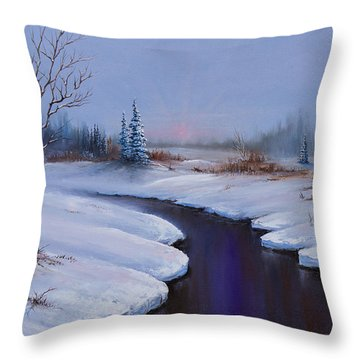 Winter Stillness Throw Pillow by C Steele
