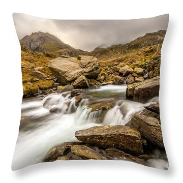 Winter Stream Throw Pillow by Adrian Evans