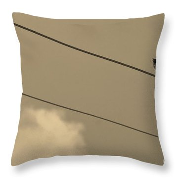 Throw Pillow featuring the photograph 2 Wire by Lynda Dawson-Youngclaus
