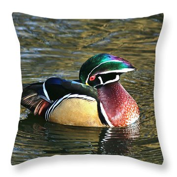 Wood Duck Beauty Throw Pillow