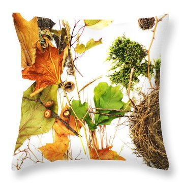 Woodsy Arrangement Throw Pillow by Suzanne Powers