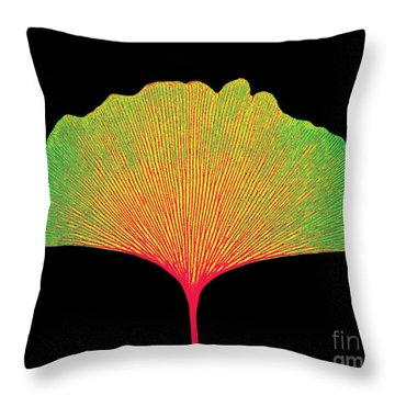 X-ray Of Ginkgo Leaf Throw Pillow by Bert Myers