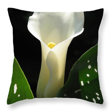 Zantedeschia Named Little Jimmy Throw Pillow
