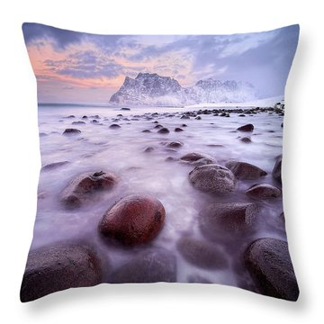Arctic Throw Pillows
