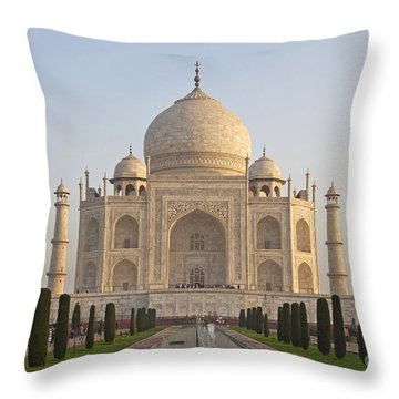 200801p089 Throw Pillow