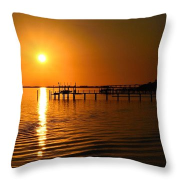 2010 Finale Throw Pillow