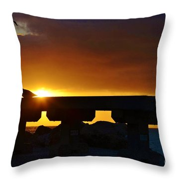 2013 - Rising To A New Benchmark Throw Pillow by Lynda Dawson-Youngclaus