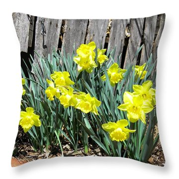 2014 Spring In South Throw Pillow
