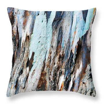 20150216181150fla3699c1p Throw Pillow