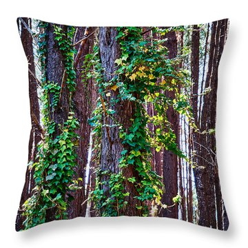 20150218112550fla24186c1p Throw Pillow