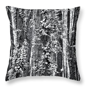 20150218112550fla24186c1p_mono Throw Pillow