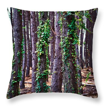 20150218113311fla24193c1p Throw Pillow