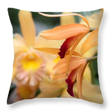 Throw Pillow featuring the photograph Orchids by John Freidenberg