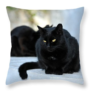 Cat In Hydra Island Throw Pillow by George Atsametakis