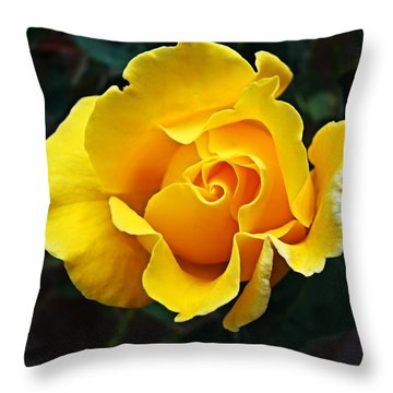 Throw Pillow featuring the photograph 24 Karat by Nick Kloepping