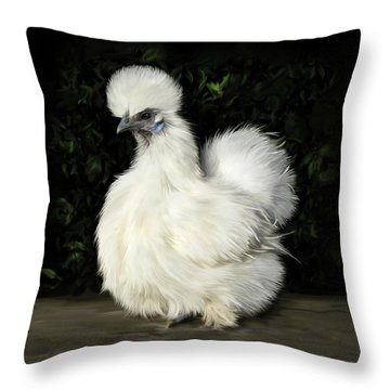 24. Tiny White Silkie Throw Pillow
