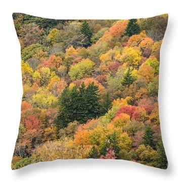 2682 Blue Ridge Parkway Throw Pillow