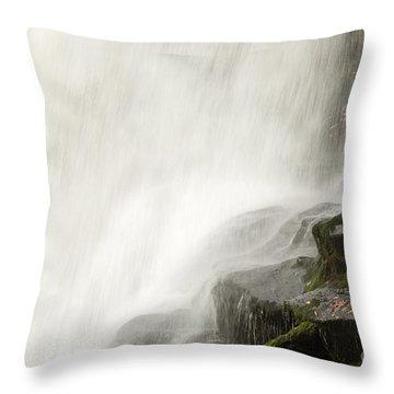 2833 Dry Falls Throw Pillow