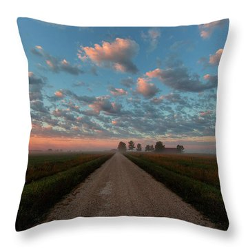 Whooping Crane Reintroduction, Direct Throw Pillow