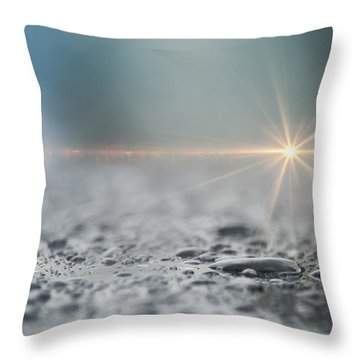 After The Rain Throw Pillow