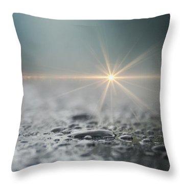 After The Rain Throw Pillow