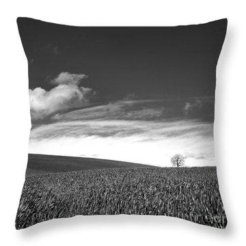 Agricultural Landscape Throw Pillow by Bernard Jaubert