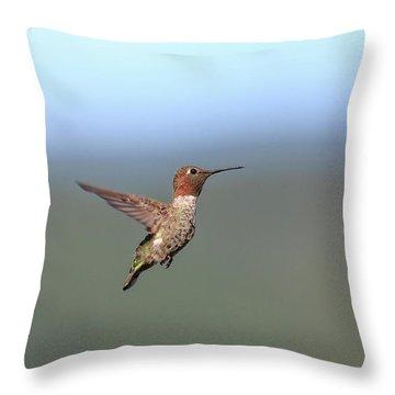 Annas Hummingbird Throw Pillows