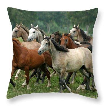 Arabian Horses Throw Pillow by Angel  Tarantella