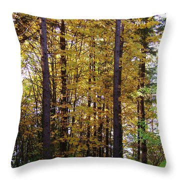 Autumn 5 Throw Pillow by J D Owen