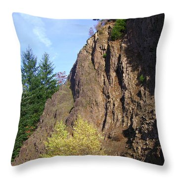 Autumn 6 Throw Pillow by J D Owen