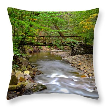 Babbling Brook Throw Pillow by Frozen in Time Fine Art Photography