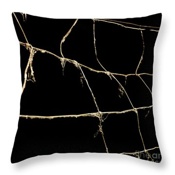 Barbed Wire Throw Pillow by Bernard Jaubert