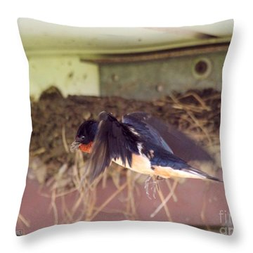 Barn Swallows Constructing Their Nest Throw Pillow by J McCombie
