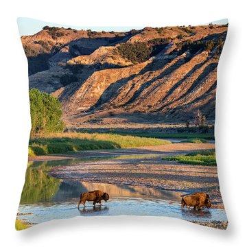 North Dakota Badlands Throw Pillows