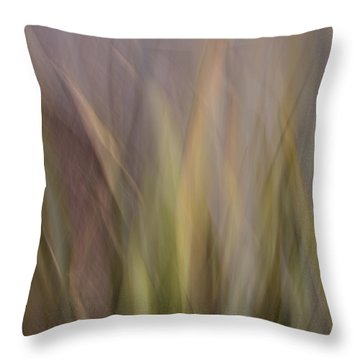 Blurscape Throw Pillow by Dayne Reast